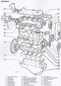 Ford Escort - Ford Orion von 8/1980 bis 8/1990