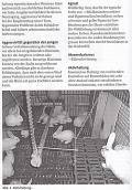 Taschenbuch Kaninchen - Zucht und Haltung von A bis Z