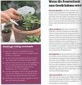 Blumen-Gärtnern: Das Grüner-Daumen-Konzept