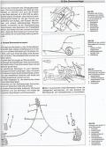 Mercedes Vito W 638 - Benziner & Diesel, Baujahre 1996 bis 2000