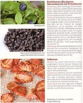 Dörren & Trocknen - Obst, Kräuter, Gemüse und Pilze