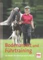 Bodenarbeit und Führtraining - So bleibt Ihr Pferd gesund und fit