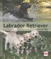 Labrador Retriever: Ursprung - Aufzucht - Erziehung - Pflege